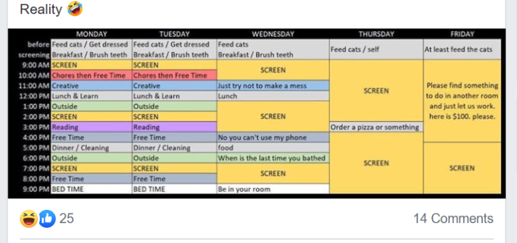 Updated COVID-19 Schedule for Reality